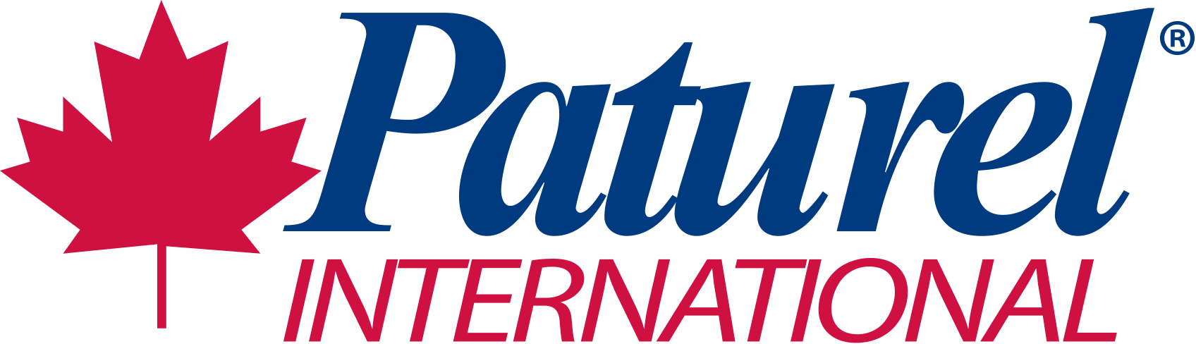 Patural International Logo